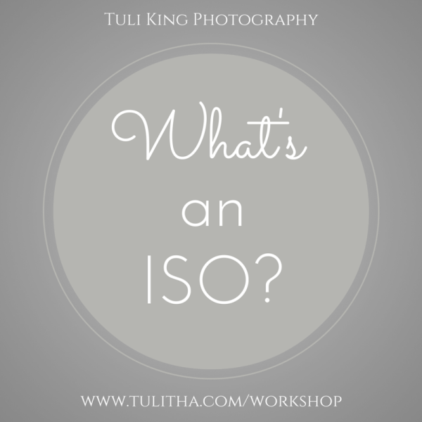 What's an ISO Photography Workshop