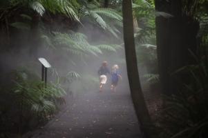 botanic-gardens-family-photographs (2 of 6)