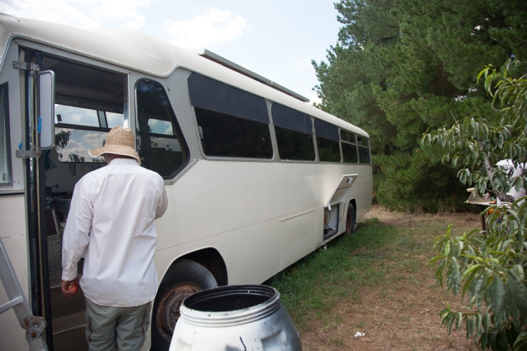 Bus Web (2 of 19)