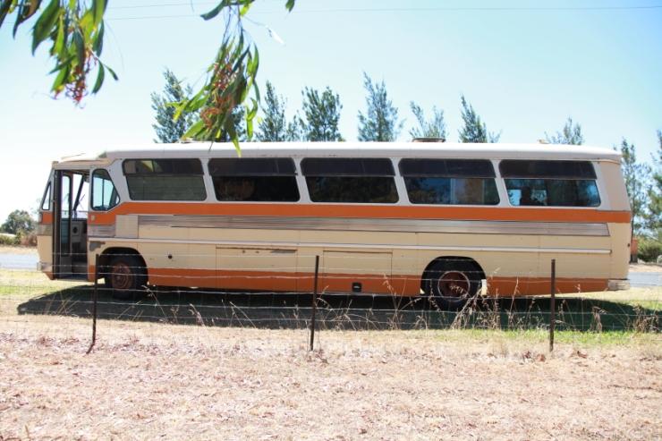 bus-web-looking-back002