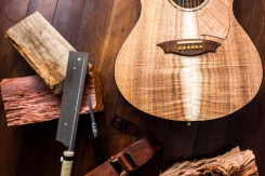 jari-veikkanen-guitars (6 of 21)